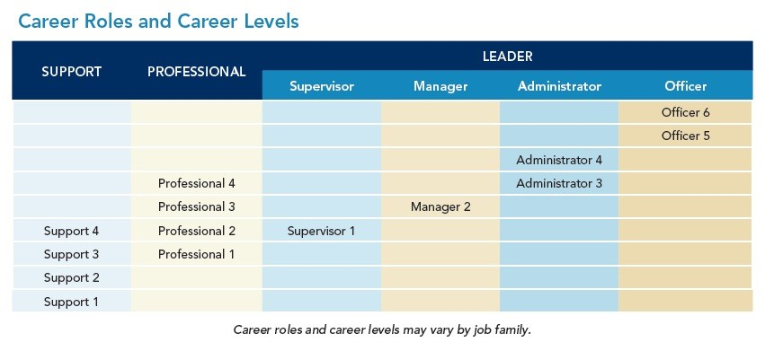 Career Roles & Career Levels chart