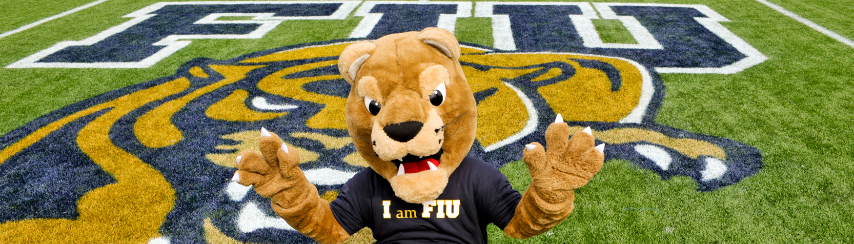 Roary mascot on football field